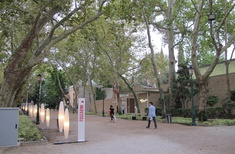 Snapshot of Biennale Giardini