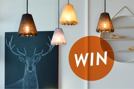 Be in the draw to win a Shibui Pendant