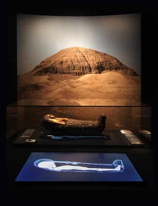 Egyptian Mummies: Exploring Ancient Lives by Studioplusthree.
