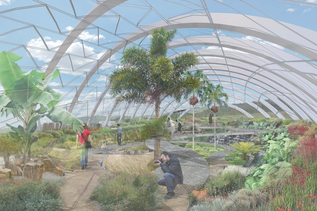 The proposed conservatory in the masterplan for the Australian National Botanic Gardens by Taylor Cullity Lethlean and Tonkin Zulaikha Greer.