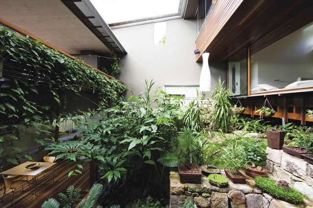 Z House, 2008, Brisbane, Qld: By wrapping the house around an internal garden (despite the panoramic views), it becomes a contemplative and intensely private arena.