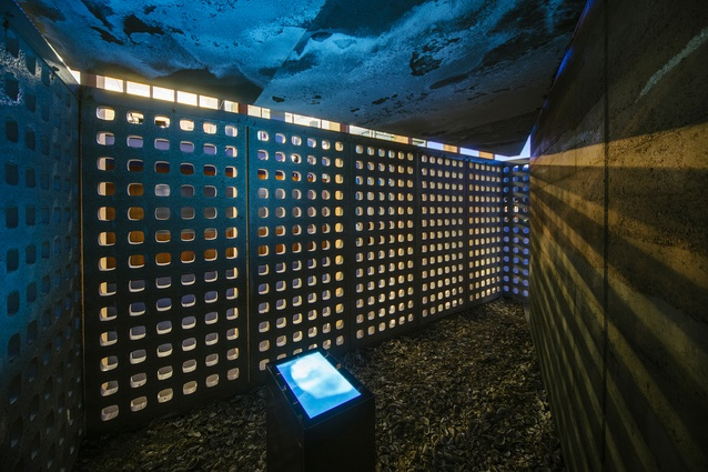 """A crunchy layer of oyster shells covers the floor of the """"tomb."""""""