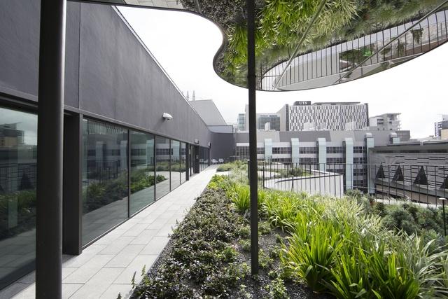 Architecture sydney university psychology