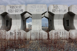 Post-tsunami Japan: A reflection on people, places and seawalls