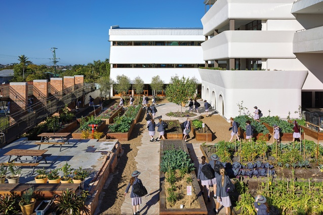 The school's ethical, spiritual and social agenda are manifested in a central garden. Produce from the garden is incorporated into the canteen's menu.
