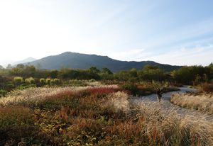 At the foothills of the mountains of Hokkaido, Tokachi Millennium Forest aims to coax the public out into the landscape.