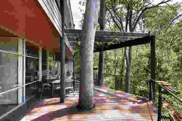 An irregular-shaped deck billowing from the building positions occupants among the trees.