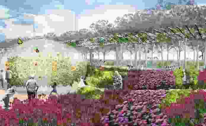 The mosaic garden will reflect native South Australian flora.