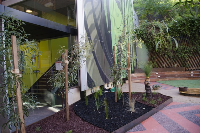 Indigenous plant species are seen at Ngarara Place at RMIT city campus by Greenaway Architects.