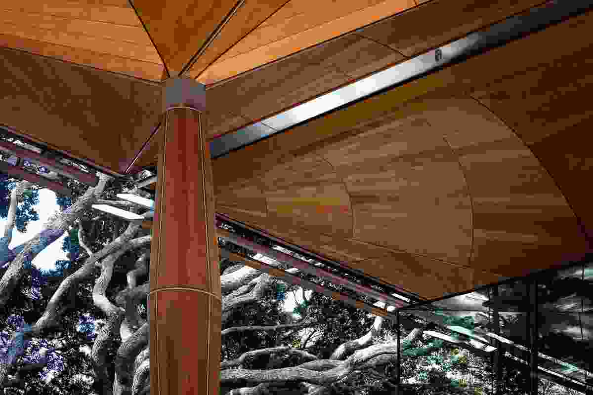 The roof balances lightly on finely tapering timber and steel posts.