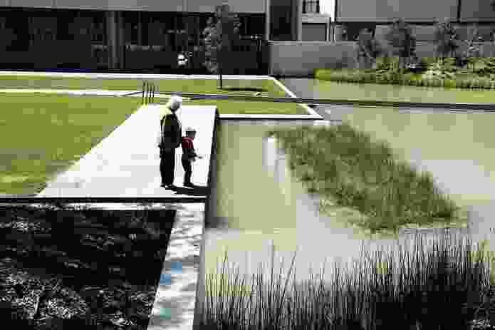 NGA visitors enjoy the upper lawn of the Australian garden.
