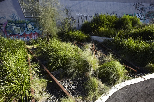 Feature planting detail  - Recycled rail tracks infilled with ballast and indigenous grasses, references the railway context and enhances wild industrial aesthetic.
