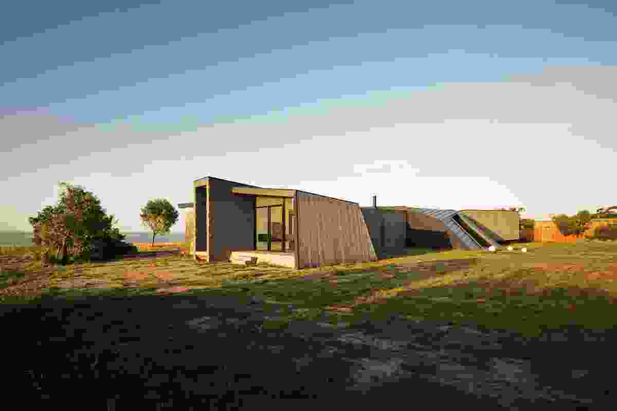 The house appears to fold back into the landscape.