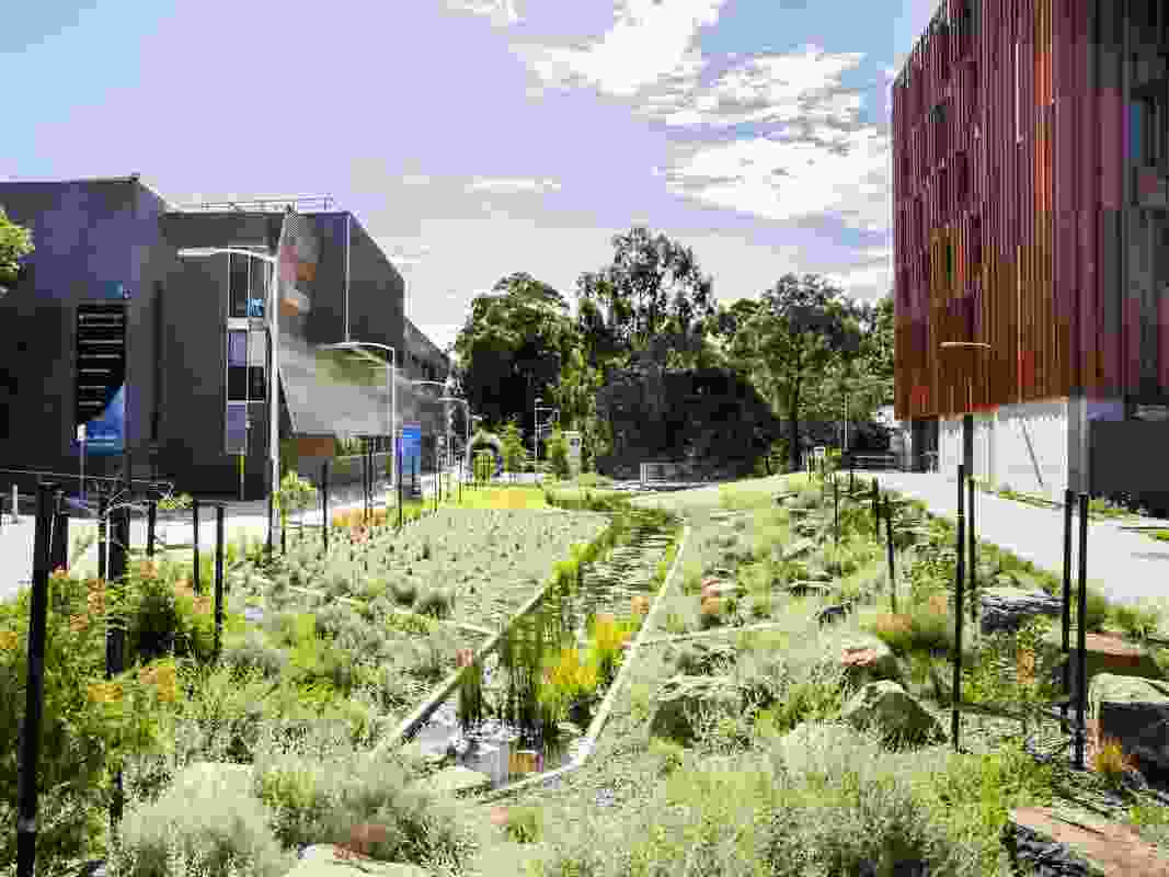 Monash University Valley Creek by GLAS Landscape Architects