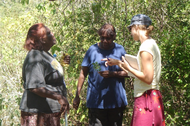 Sophie Denham and Jane Augustine sharing plant knowledge with Vanessa Margetts.