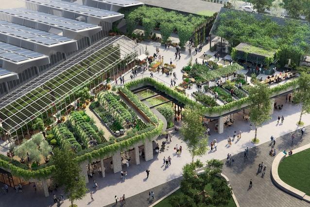 Indicative design of the Burwood Bricks rooftop farm and restaurant.