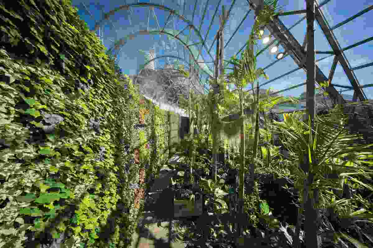 Inside, the Arc Glasshouse features the intricate organic geometries of other- worldly plants.