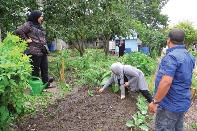 Parckfarm allows local residents to come together to grow fruit and vegetables and keep chickens, ducks and goats as a part of extending private gardening into the public realm. The Parckfarm project is run by non-profit organization Parckfarm T&T.