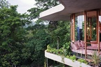 Tropical living machine: Planchonella House
