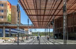 Social healing: Sunshine Coast University Hospital