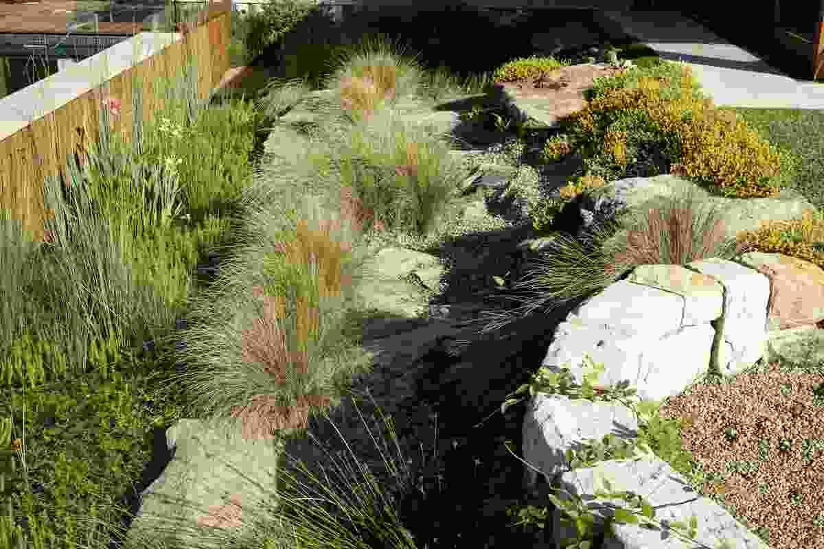 Clifftop Garden by Jane Irwin Landscape Architecture