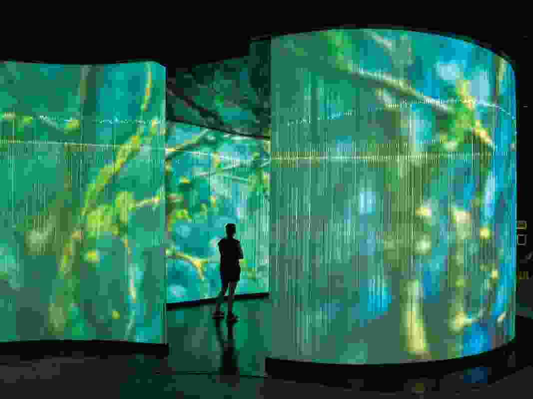 Arterial Design's exhibition design includes an interpretive space called the Billabong, which uses visual and audio elements to convey stories.