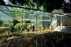 The garden and delicate glass structures on the exterior of the Japanese pavilion.Image: John Gollings