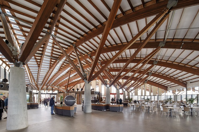 The vaulted roof inside the Visitor Centre features radiating timber beams supported by concrete columns.