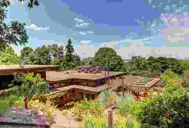 沿着悉尼城堡山的山脊走下去,房子被自然景观包围着。