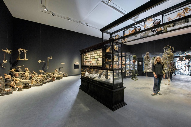 Exhibition Displays Australia : Dark presence fiona hall exhibition inaugurates new