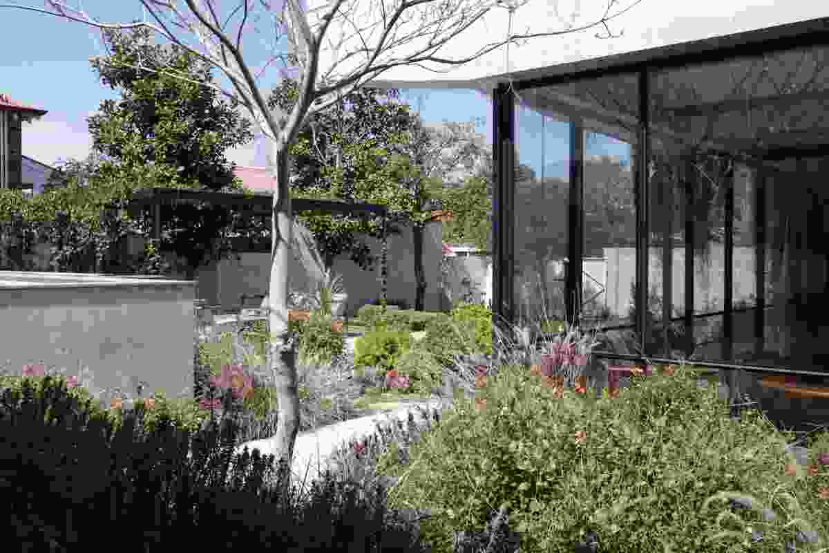 Reed House by Banksia and Lime won the Award of Excellence in the Gardens category.