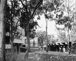 Union College.