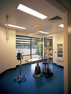 One of the surgery rooms. Image: Scott Burrows
