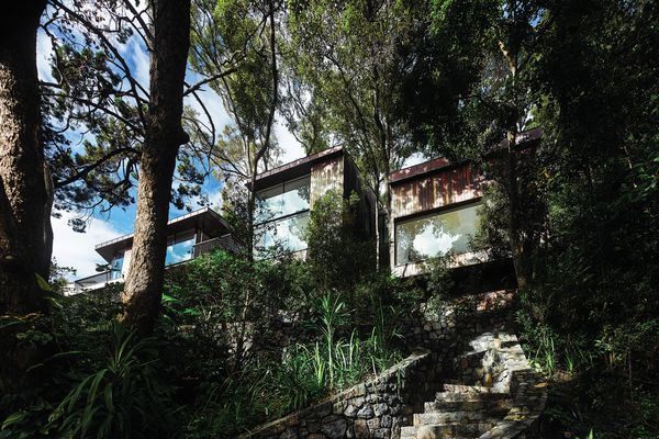 Located on a prominent hilltop site, the house is designed to recede into its leafy surrounds.