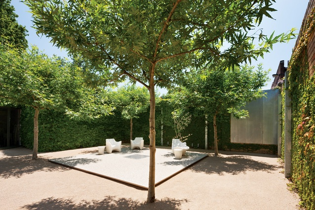 A crisp plane of paving is positioned within a square of four plane trees.