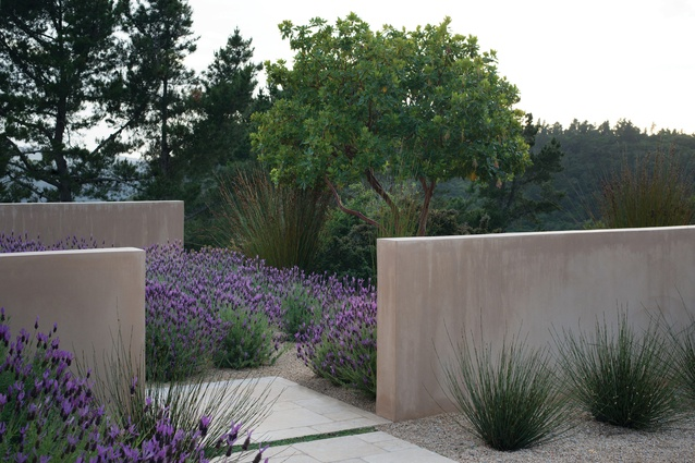 Refugio in Santa Cruz, California is a coastal garden that integrates native meadow restoration, olive orchards, edible gardens, water catchment systems and animal husbandry.