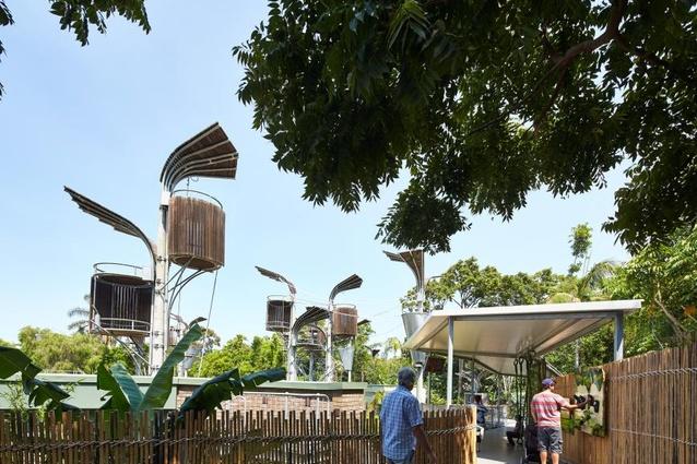 Perth Zoo Orang-utan Exhibit, Jungle School by Iredale Pedersen Hook Architects.