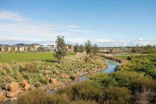 A series of wetlands aims to scrub collected stormwater prior to its discharge.