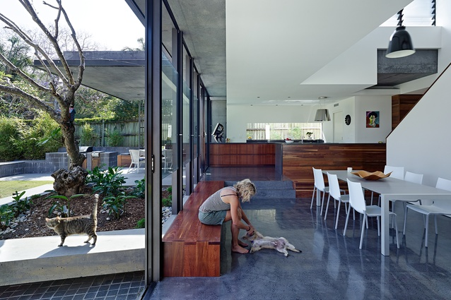 The new open-plan living area dissolves the boundary between indoor and outdoor spaces.