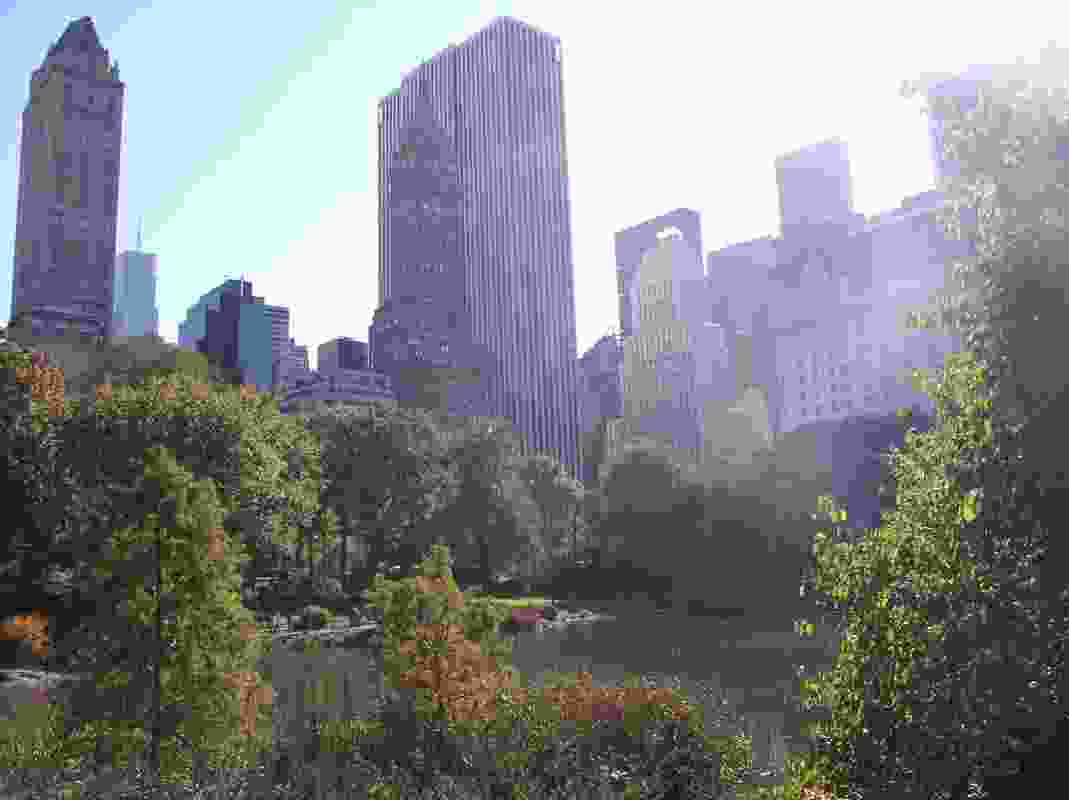 Olmsted could not have fathomed the skyscrapers that today rise above his natural screen from the human world.