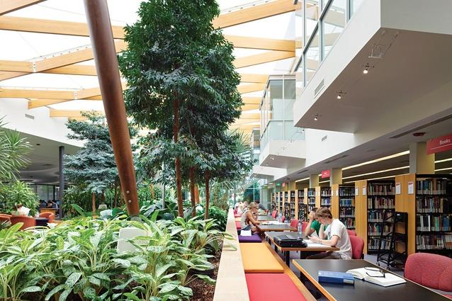 Work – Resource Centre Ipswich by Wilson Landscape Architects