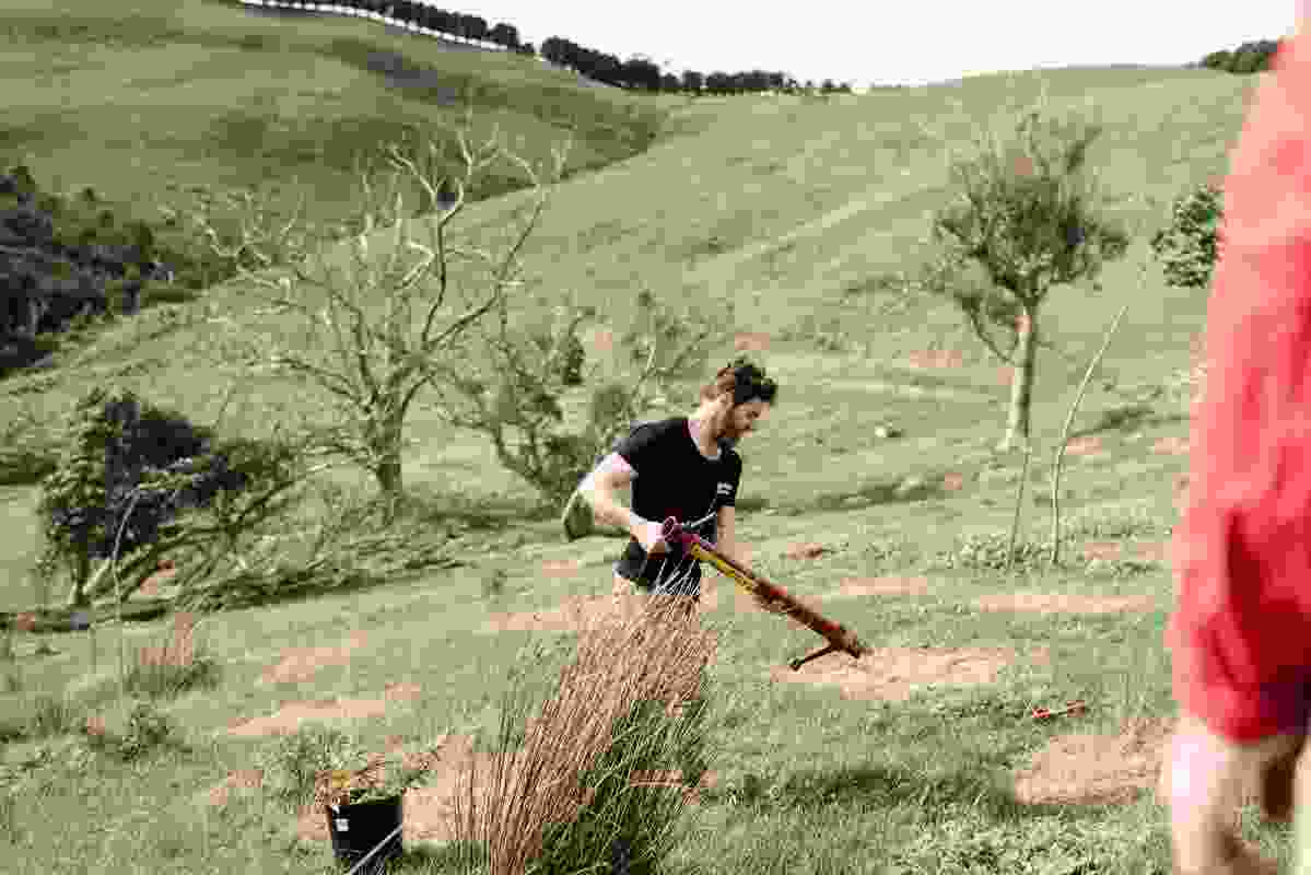Volunteers from Intrepid Landcare at a planting day held at the property.