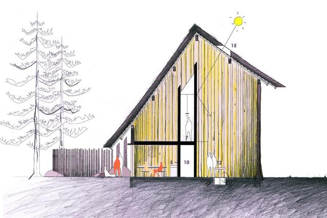 The proposal by Peter Stutchbury Architecture, Keiji Ashizawa Design, Janet Laurence and Marian Macken.