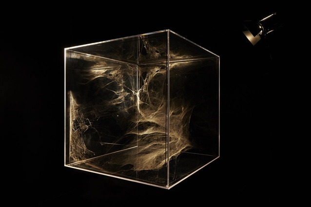 Spider web structures by Tomas Saraceno.