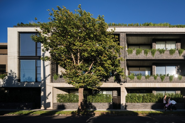 Greenery cascades over the brick balconies and off-form concrete outlines the building. Photograph: Trevor Mein.