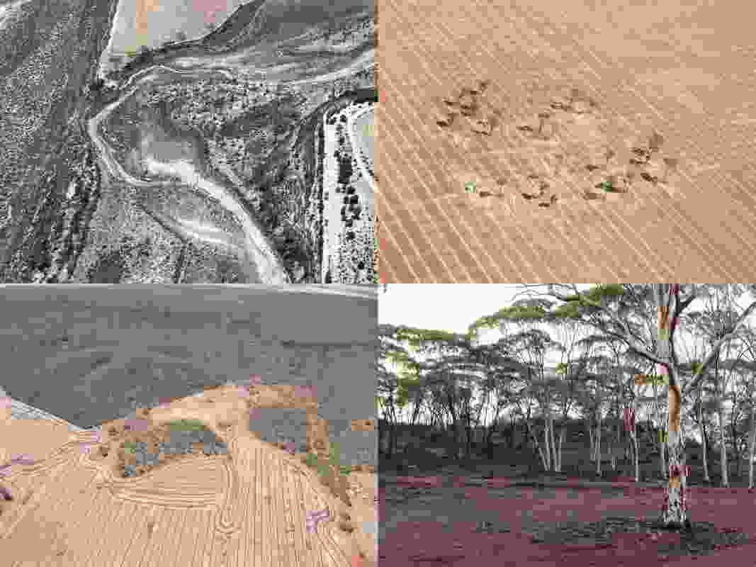 Images of the farm. Clockwise from top left: salinity in the Mortlock River, fragment of remnant vegetation, Salmon Gums in the Wongan Hills, farmland up against the Wongan Hills.
