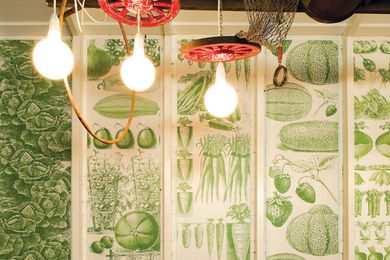 The monochrome wallpaper was created from Fin de Siecle botanical illustrations of produce.