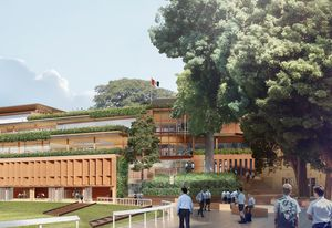 The Cranbrook School Hordern Oval precinct by Architectus.