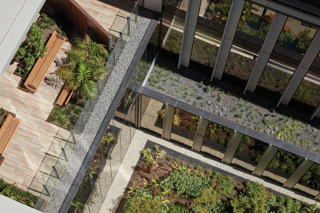The strategically positioned courtyards and green roofs contribute to the creation of a tranquil healing environment.