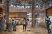 Anthony Gill Architects to design food hall in Kengo Kuma's Darling Exchange